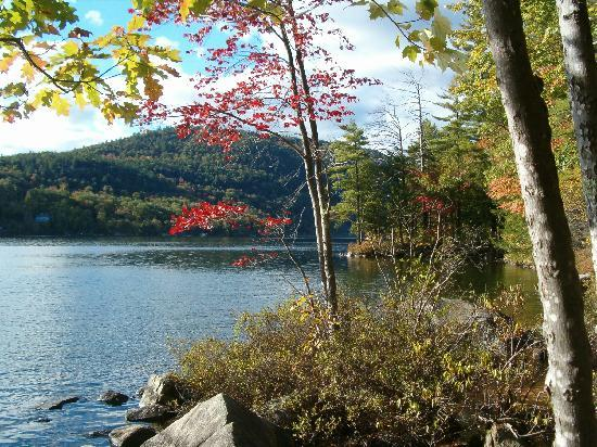 Wellington State Park: Fall foliage changes