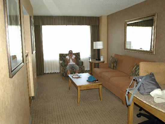 Doubletree Suites by Hilton Hotel Anaheim Resort - Convention  Center: Living room of suite