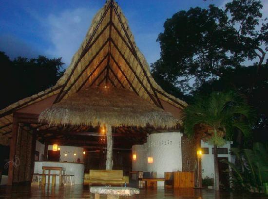 Buena Vista Surf Club : Bar, lounge, decking....