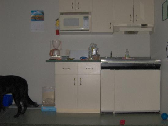 Arrowhead Inn: Kitchen area in double room