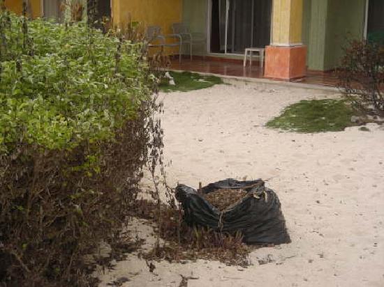 Maya Tankah by Freedom Paradise: i rifiuti sparsi ovunque capita nel villaggio