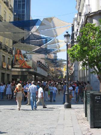 Los Amigos Hostel: Calle Arenal