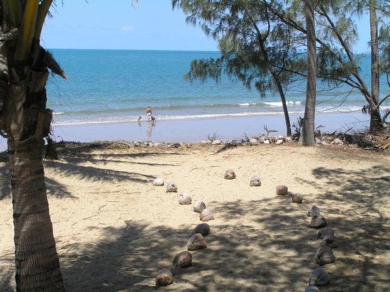 Oak Beach, Australië: Beach