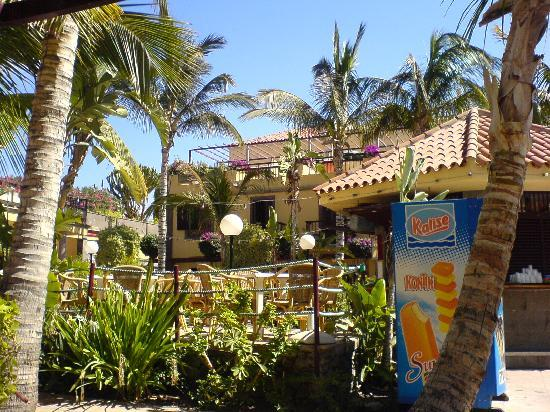 Maspalomas Oasis Club: view from our door