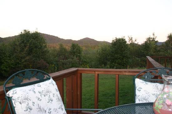Ouachita Mountain Hideaway: Side Deck
