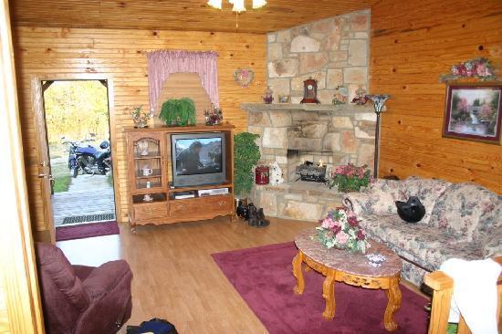 Ouachita Mountain Hideaway: Living Room