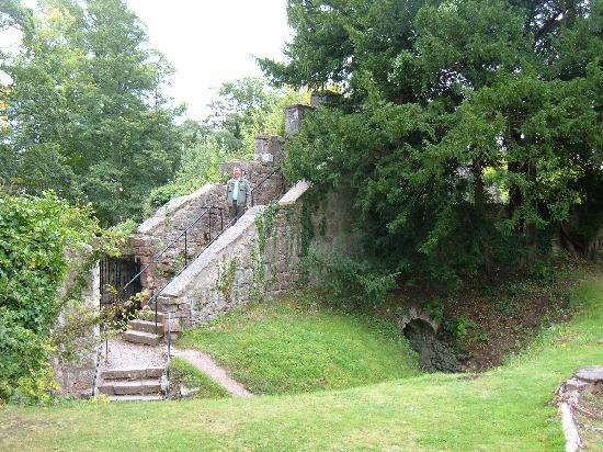 Ruthin Castle grounds