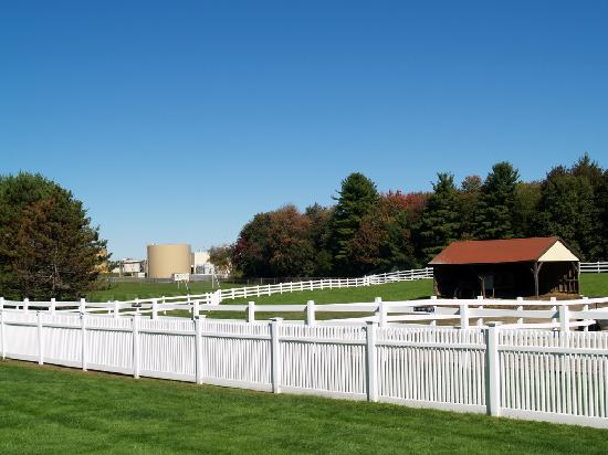 Anheuser-Busch Brewery Tours: pasture with brewery behind