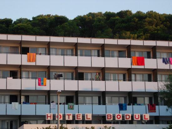 Photo of Hotel Bodul Stari Grad