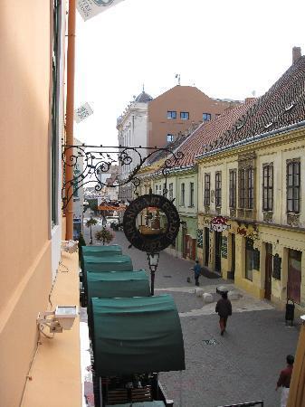 Aranyhajo Fogado : view from room