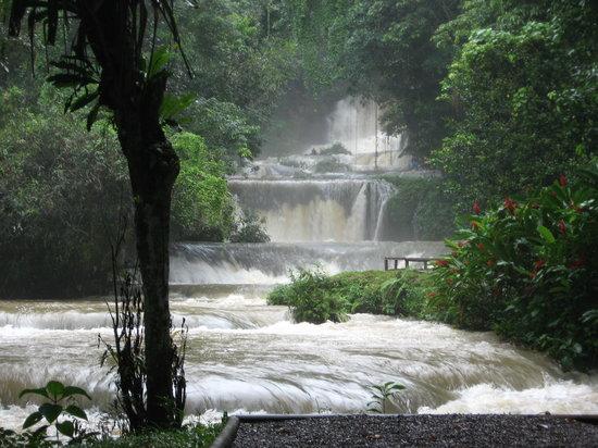 Whitehouse, Jamaika: YS falls