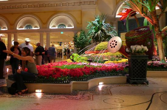 Summer 2007 Picture Of Conservatory Botanical Gardens At Bellagio Las Vegas Tripadvisor