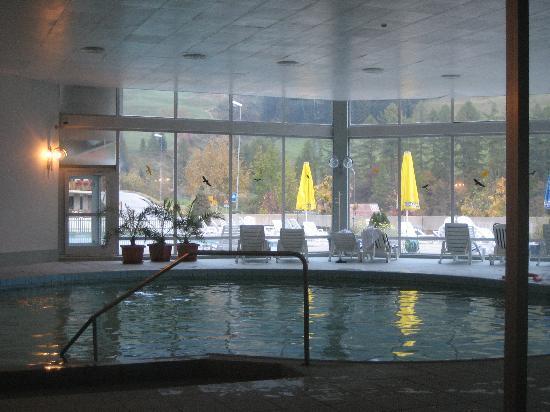 Hotel Regina Terme: indoor pool