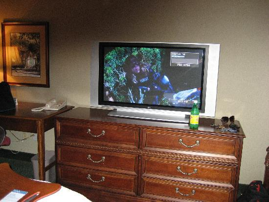 Hampton Inn San Diego - Kearny Mesa: Hampton Inn Kearny Plasma TV