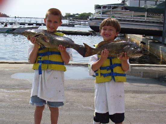 Floryda: My two young men caught two old Grouper!