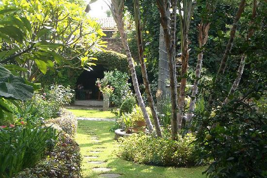 Los Artistas B & B: The lush grounds of Los Artistas