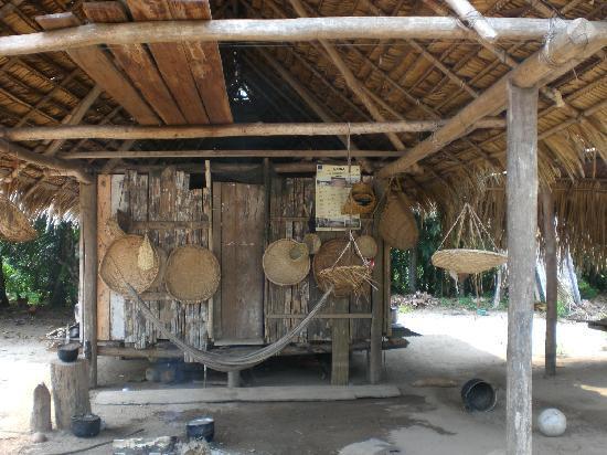 Sepahua, Peru: Excursión