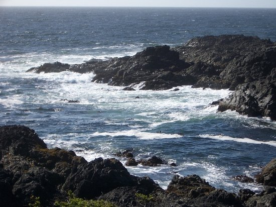 ‪ووترز إيدج شورسايد سويتس: View from the Pacific Rim Path, Ucluelet‬