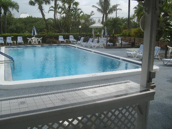 Caribe Beach Resort: Der Pool