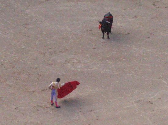 Plaza de Toros las Ventas: Matador and Bull