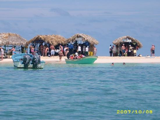 Paradise Island & The Mangroves (Cayo Arena): Paradise Insel
