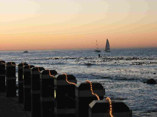 Radisson Blu Hotel Waterfront, Cape Town: Evening Whale Spotting