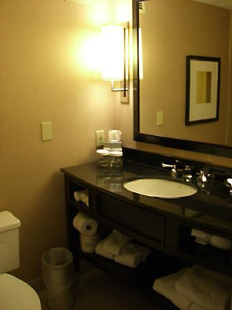 The Saratoga Hilton: room #407 bathroom