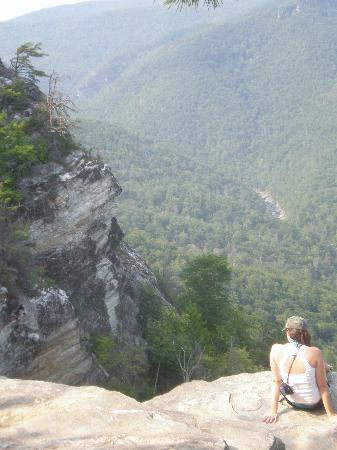 Linville Gorge Wilderness Area: Top of Wiseman's view