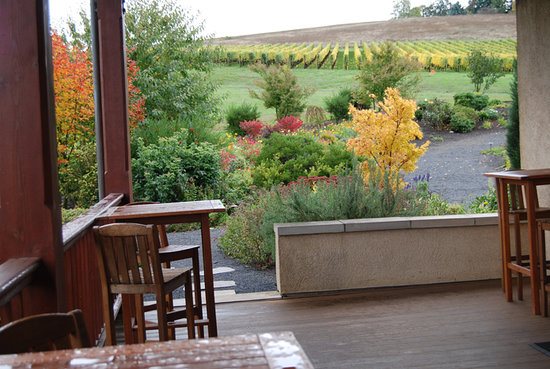 Domaine Drouhin Oregon: Patio Area