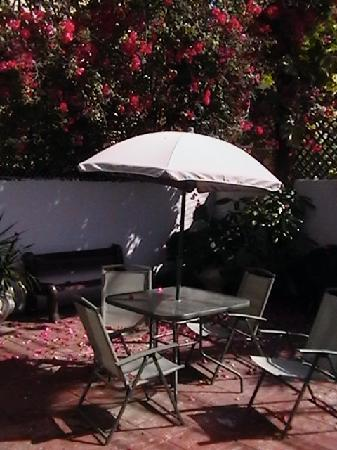 Coqui del Mar Guest House: The back patio