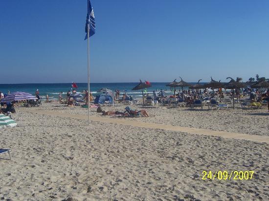 Hipotels Coma Gran Aparthotel: Sa Coma Beach