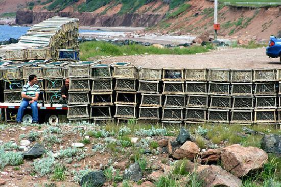 Cape Breton Island, Canada: Lobster traps in Plesant Bay