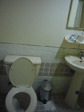 พาราไดซ์ โฮเต็ล: toilet 1 before we leave