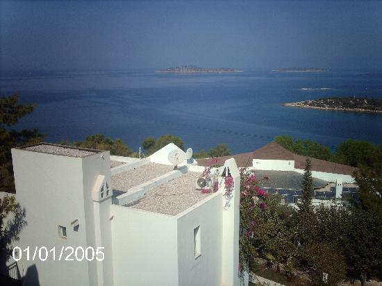 Torba, Turquía: View From Room 300 Steps Up Family Rooms Right Next To Night Club