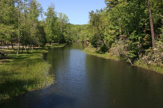 Pickett State Park and Forest: A view from the swinging bridge at Pickett State Park