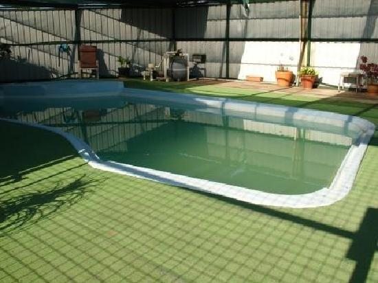 Walgett, Australië: Pool at Motel