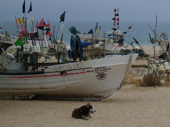 Monte Gordo, Portugal: fishing boat landing in town