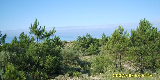 Monte Gordo, Portogallo: over the dunes off of bike path