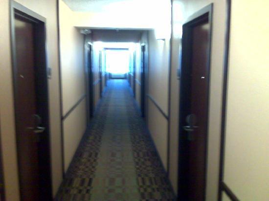 Hyatt Place Sacramento/Rancho Cordova: Corridor View