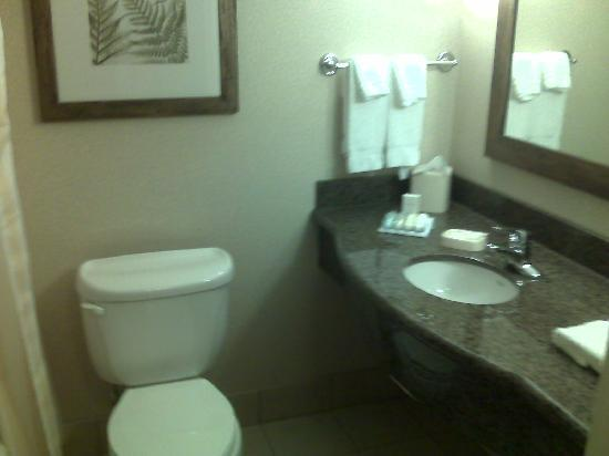 Hilton Garden Inn Seattle/Issaquah: Bathroom