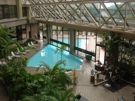 Pool Area Picture Of Crystal Gateway Marriott Arlington Tripadvisor