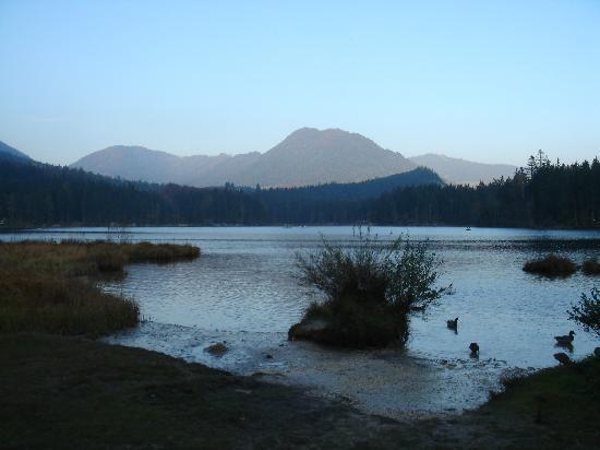 Pension Seeklause: Lake Hintersee