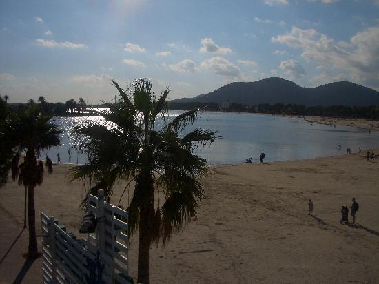 Port d'Alcúdia, Spanien: Beach from Harbour Bridge