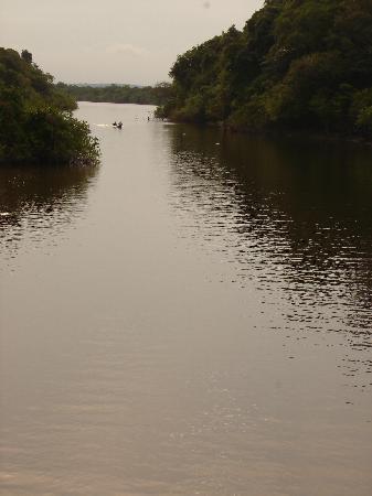 Amazon Village Jungle Lodge: the amzon river