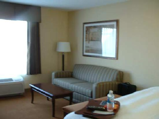 Hampton Inn & Suites Rogers: Sofa
