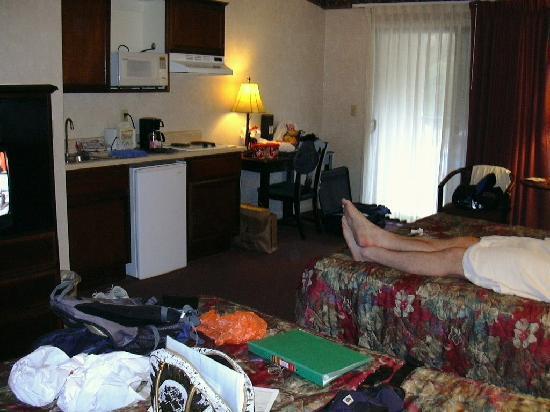 Yosemite View Lodge: adequate room