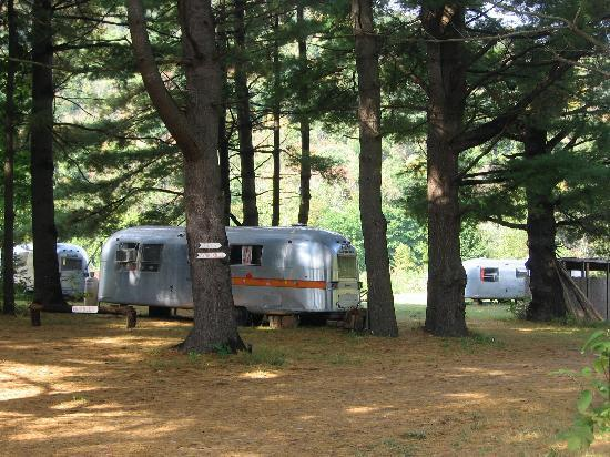Kate's Lazy Meadow Motel: some of the airstreams