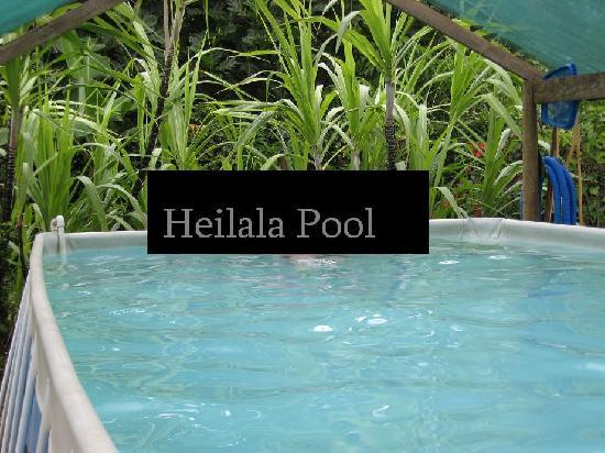 Heilala Holiday Lodge: Heilala Pool