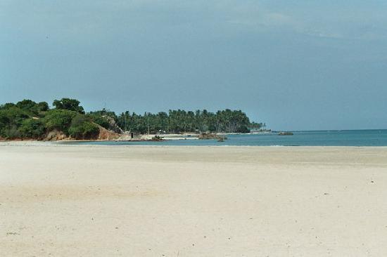 Trinco Blu by Cinnamon: Blick vom Strand auf das Meer