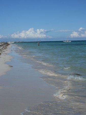 Пуэрто-Морелос, Мексика: Puerto Morelos beach
